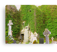 The Ruins Of Rathmullan Priory Canvas Print