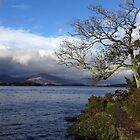 The bonnie banks of Loch Lomond by Steve Falla