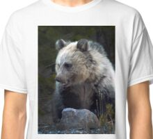 Grizzly Bear Cub-Signed-#3686 Classic T-Shirt