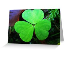 Green cloverleaf with a tiny waterdrop Greeting Card