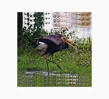 MALE STORK BIRD..TRYING TO ATTRACT FEMALE..BREEDING SEASON... VERSION TWO VARIOUS APPAREL-JOURNAL,PILLOW,TOTE BAGS ,GRAPHIC TEE SHIRTS,ECT.. Unisex T-Shirt