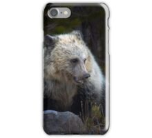 Grizzly Bear Cub-Signed-#3708 iPhone Case/Skin