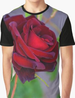 Rose Red Graphic T-Shirt