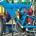 Blue Bike by Susan R. Wacker