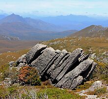 Frost-wedged Conglomerate, SW National Park, Tas by Nick Delany
