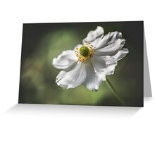 I Stand Alone - Anemone Greeting Card