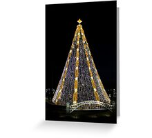 National Christmas Tree, DC, 2015 Greeting Card