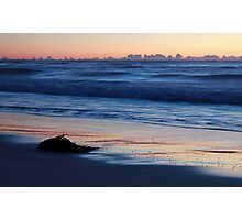 Kelp and Sunrise Photographic Print