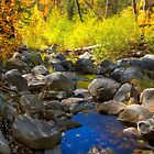 Oak Creek Canyon Colors by Sue  Cullumber
