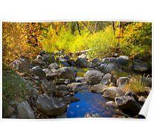 Oak Creek Canyon Colors Poster