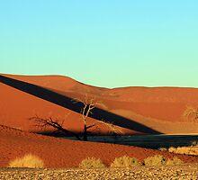 Dune 45 Sunrise by Jennifer Sumpton