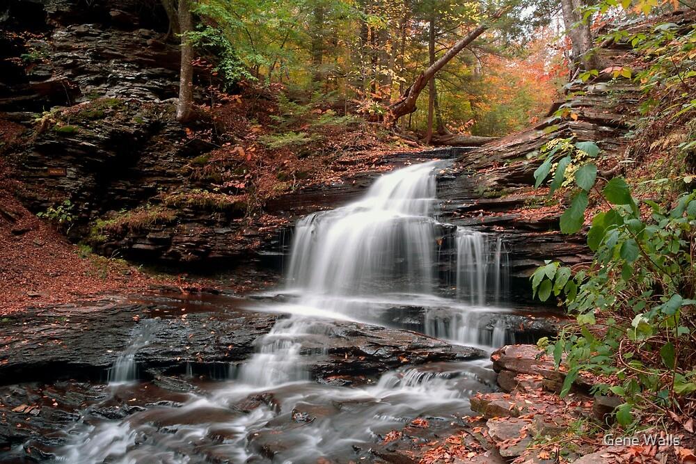Onondaga Waterfall Transitions Into Fall by Gene Walls