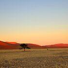 A New Day Dawns by Jennifer Sumpton