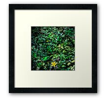 Express yourself with flower power Framed Print