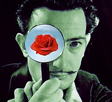 salvador dali by adam mazzarella