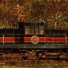 Catskill Mountain Railroad Engine 29 by PineSinger