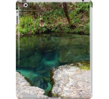 A Clear View, Rock Springs iPad Case/Skin