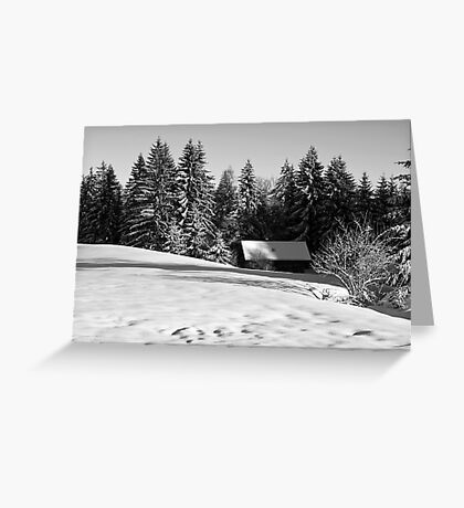 snow in winter Greeting Card