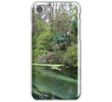 Down Stream, Rock Springs iPhone Case/Skin
