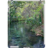 River of Beauty, Rock Springs iPad Case/Skin