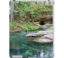 The Entry Way, Rock Springs iPad Case/Skin