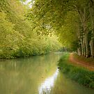 Canal du Midi 11 by Jacinthe Brault
