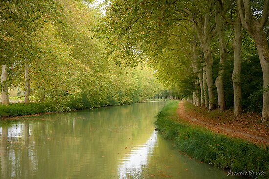 Canal du Midi 11 by Jacinthe Brault