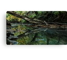 Still Waters Run Deep Canvas Print