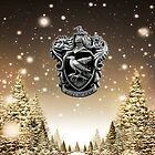 Ravenclaw Winter Creat by Serdd