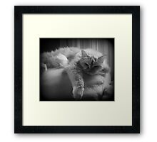 Mollie In Black and White Framed Print