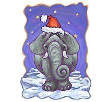 Elephant Christmas Photographic Print
