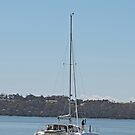 Catamaran, Georges Bay, Tasmania by Margaret  Hyde