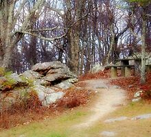 Resting Place by virginian