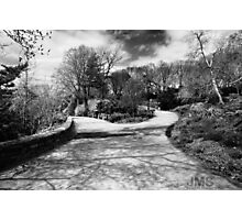 Tryon Fork in Path Photographic Print