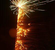 Firework 15 by CJSmithPhoto
