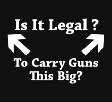 Is It Legal To Carry Guns This Big? by BrightDesign