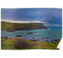 Northern Ireland. Giant's Causeway. Coast. Poster