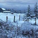 Winter Wonderland by Jeanette Muhr