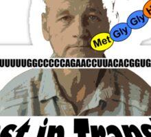 Not Lost in Translation Sticker