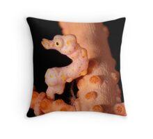 Denise's Pygmy Seahorse Throw Pillow