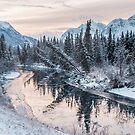 icing on the creek  by tara romasanta