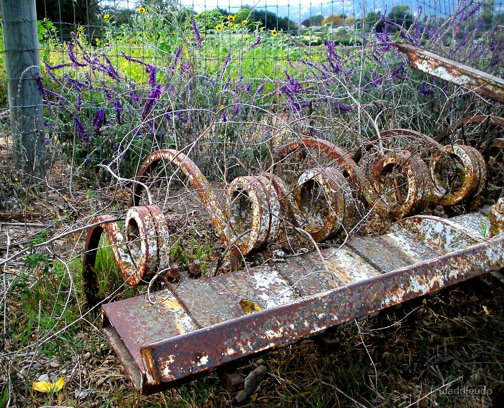 The Beauty of Organic Farm Equipment by waddleudo