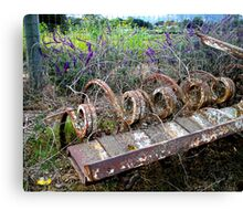 The Beauty of Organic Farm Equipment Canvas Print