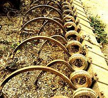 The Beauty of Organic Farm Equipment 2 by waddleudo