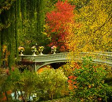 Bow Bridge In Autumn by Randy  Le'Moine
