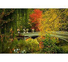 Bow Bridge In Autumn Photographic Print