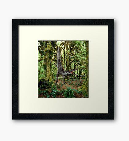 Velociraptor   Framed Print