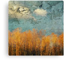 Everglades Abstract Canvas Print