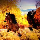 Cypher and Aspens by Arla M. Ruggles