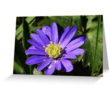 Cute blue and yellow flower Greeting Card